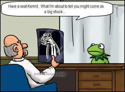 "Kermit at the doctor: ""Are we real?"" A big shock. Advaita joke. Non-duality. This might lead to enlightenment!"