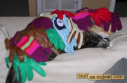 Cat under clothes... (Stuff on cats)