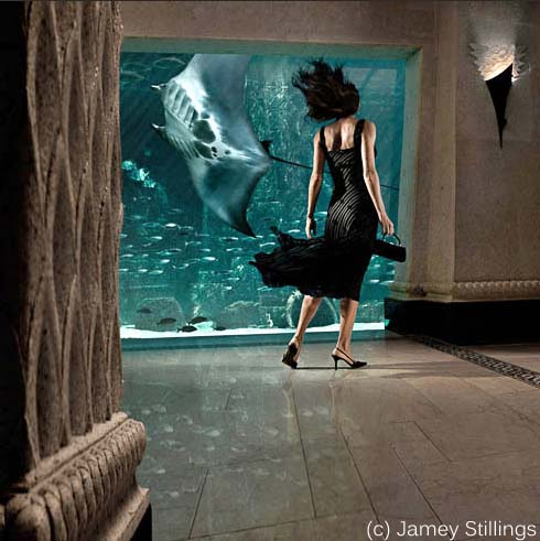 Woman in front of manta sting ray in aquarium.