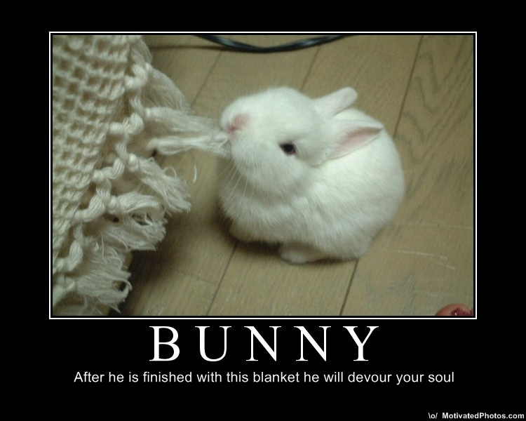 sexy bunny Funny jokes easter