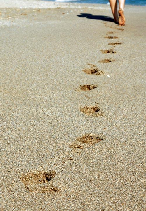 Steps on Beach. (Sxc.hu)