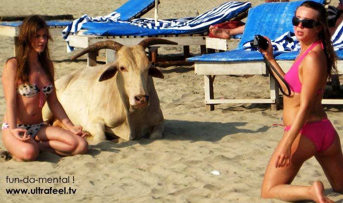 Goa naked virgin girls photos, horney shemale galleries