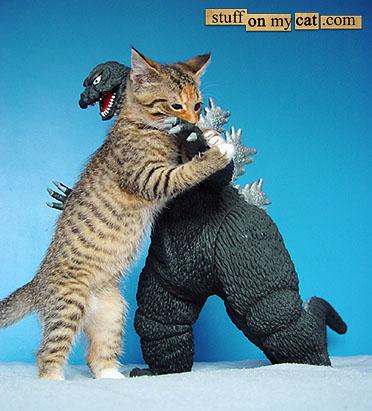 Dinosaur fighting cat!