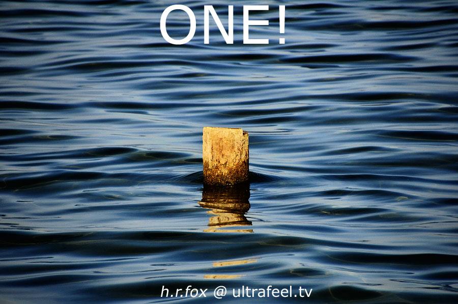 ONE! (h.r.fox @ ultrafeel.tv)