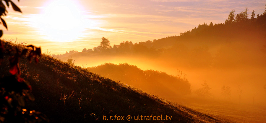 'Orange Misty Morning' by h.r.fox @ ultrafeel.tv