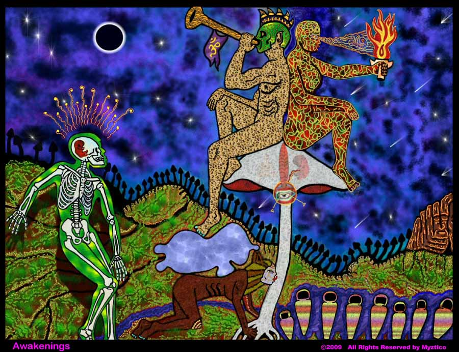 Myztico Campo: Awakenings