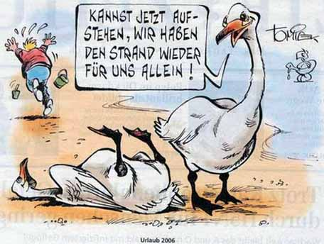 Vogelgrippe macht vögel intelligent?