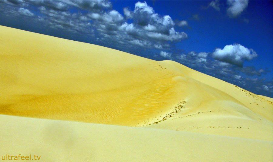 Desert - Yellow Dune