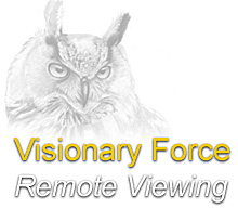 Logo der Visionary Force. (Martinzoller.com)