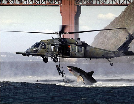 Fake photo: Shark jumps at diver on helicopter.