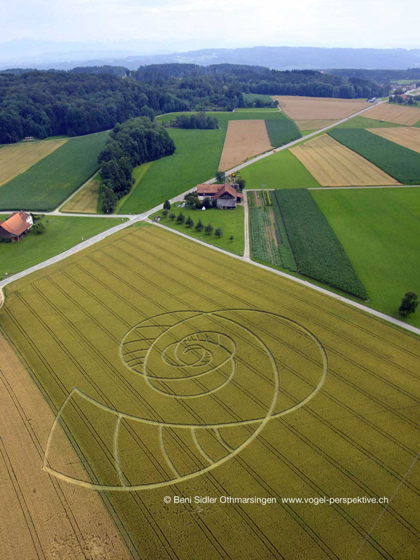 Cropcircle in Hörhausen, Switzerland.